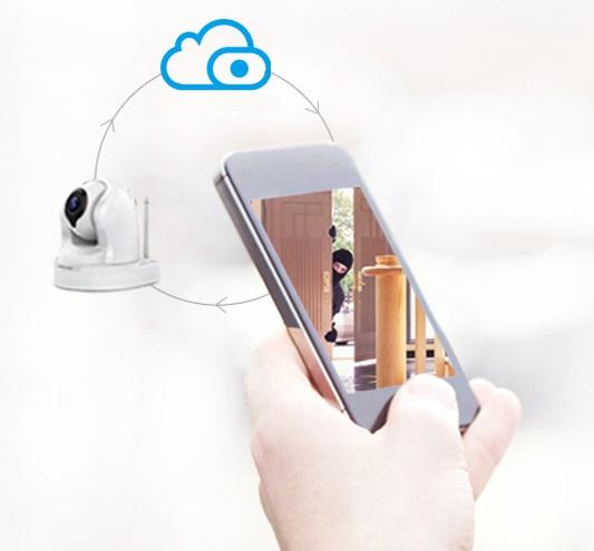 IP камера Foscam